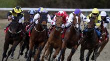 Horse Racing: Friday's market movers
