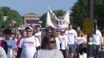 Hundreds of families team up to battle breast cancer