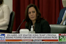 Kamala Harris shames senators for 'doing the president's personal bidding' and approving Hunter Biden subpoena