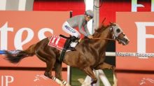 California Chrome, Arrogate head Breeders' entries