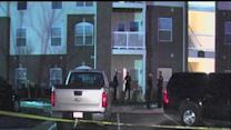Witnesses describe scene where toddler fatally stabbed