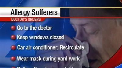 Allergist Explains Causes of Springtime Suffering