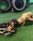 Abdos: ce petit garçon d'un an et demi est meilleur que beaucoup à la roulette à abdos