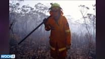 Homes Evacuated As Wind Fans Wildfires Near Sydney