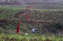 China scrambles to plug border gaps as thousands flood home