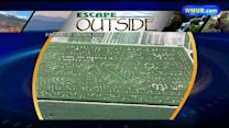 Escape Outside: Corn mazes