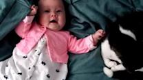 Adorable baby loves to pet her cat