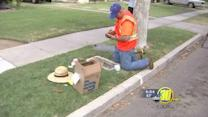 Nearly all Fresno homes now have metered water