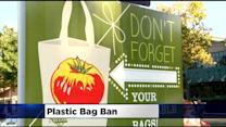 Sacramento Shoppers Taking Wait And See Approach With Proposed Plastic Bag Ban