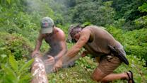 'Dual Survival': Survival 101: How to Pick the Perfect Firewood