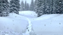 """"""" Popular destination has measured more than 300 inches of snow this winter!"""
