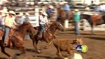 Clovis Rodeo sneak peek