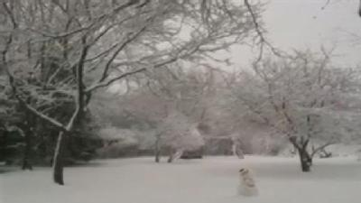 Raw Video: Snow In Hartland Wednesday Morning