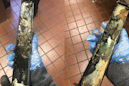 McDonald's employee shares some disturbing images of a moldy ice cream machine