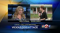 Two people attacked by dog in Deltona