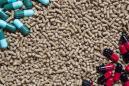 Antibiotiques : les animaux de moins en moins exposés