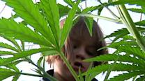Medical Marijuana and Kids, a New Frontier