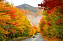 Fall foliage map will help you plan out your leaf-peeping weekends in the US